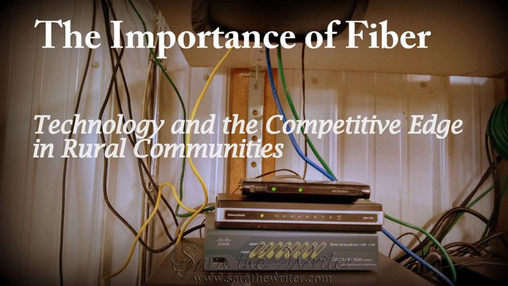 Importance of Fiber title
